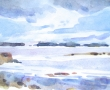 Birch Point , Owls Head_9x6_Watercolor