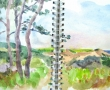 Pilgrim Heights, N. Truro_12x9_Watercolor